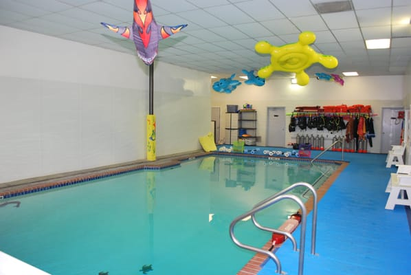 Image result for Sea Sports Swim Katy